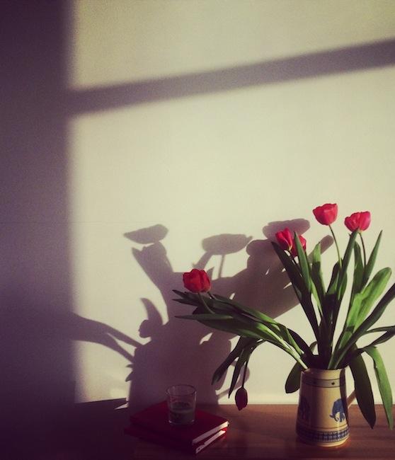 photo (19)